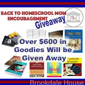 New Homeschool Year Mom Encouragement Giveaway!! Over $600 worth of goodies up for grabs, and THREE winners.